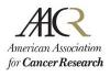 αβ TCR-mediated recognition: relevance to tumor antigen discovery and cancer immunotherapy