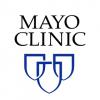 Mayo Clinic Fundamentals of Quality Improvement - Bronze Level Online