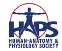 Human anatomy physiology society (HAPS) 33rd Annual Conference