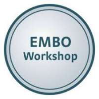 European Molecular Biology Organization (EMBO) workshop: Noncoding RNAs in