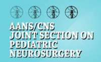 American Association of Neurological Surgeons (AANS) 86th Annual Scientific