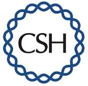 CSH Nuclear Organization and Function 2018