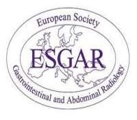 Cases-based Workshop in Liver Oncology - Integration of imaging in patient