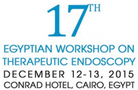 17th Egyptian Workshop on Therapeutic Endoscopy