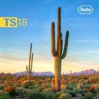 Tucson Symposium 2018