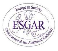 European Society of Gastrointestinal and Abdominal Radiology (ESGAR) Hands-on Workshop on CT Colonography (Oct 17 - 19, 2018)