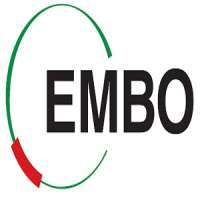 European Molecular Biology Organization (EMBO) Microglia Workshop