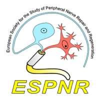 4th International Symposium on Peripheral Nerve Regeneration (ISPNR)