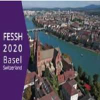 24th Federation of European Societies for the Surgery of the Hand (FESSH) C