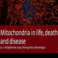 Mitochondria in life, death and disease 2019