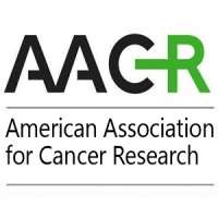 Inaugural AACR International Meeting - Advances in Malignant Lymphoma: Maxi