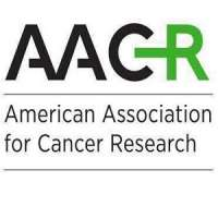 AACR Virtual Meeting: Precision Medicine Strategies to Improve Therapy of Diffuse Large B-Cell Lymphoma (DLBCL)