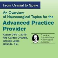From Cranial to Spine: An Overview of Neurosurgical Topics