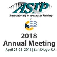 The 2018 ASIP Annual Meeting at EB
