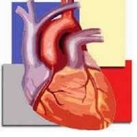 Cardiac CTA Course Level 2: Advanced by Amery Medical Academy (AMA) (Aug 21