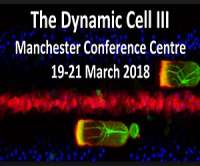 The Dynamic Cell III by Biochemical Society