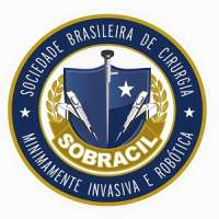 Campinas 2019 by Brazilian Society of Minimally Invasive and Robotic Surgery / Sociedade Brasileira de Cirurgia Minimamente Invasiva e Robotica (SOBRACIL)
