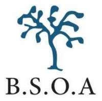 British Society of Orthopaedic Anaesthetists (BSOA) Virtual Event Series 2020