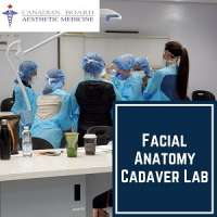 Facial Anatomy Cadaver Lab Course