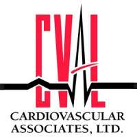 Cardiovascular CT Imaging: Intensive Level II Training Course and Introduct