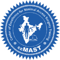 Certificate Course in Operative Techniques in Gynaecological Endoscopy (Mar
