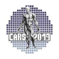 CARS 2019 Computer Assisted Radiology and Surgery - 33rd International Congress and Exhibition