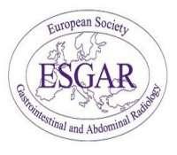 European Society of Gastrointestinal and Abdominal Radiology (ESGAR) and Eu