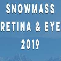 Snowmass Retina & Eye 2019