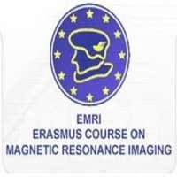 Musculoskeletal MRI (comprehensive course)