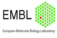 EMBO Conference : From Functional Genomics to Systems Biology