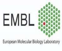 EMBL Conference: Cancer Genomics