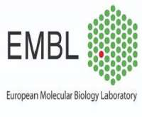 EMBL Conference: 8th Congress of the International BioIron Society