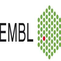 EMBO | EMBL Symposium: Seeing is Believing - Imaging the Molecular Processes of Life