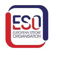 7th ESO-ESMINT-ESNR Stroke Winter School