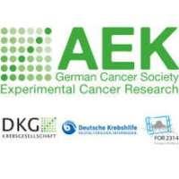 20th International AEK Cancer Congress