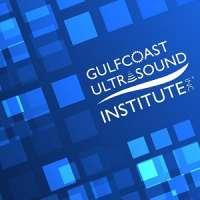 Blended Introduction to Carotid Duplex/Color Ultrasound - Blended Course