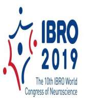 IBRO 2019 - The 10th IBRO World Congress of Neuroscience