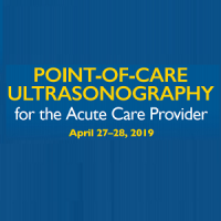 Point-of-Care Ultrasonography for the Acute Care Provider