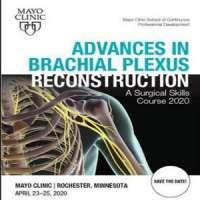 Advances in Brachial Plexus Reconstruction: A Surgical Skills Course 2020
