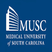 CME Medical Conferences in Charleston, USA 2019 - 2020