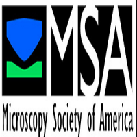 Microscopy & Microanalysis Conference 2020