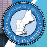 New England Section of the American Urological Association (NEAUA) 2018 Ann