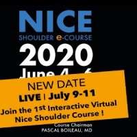 Nice shoulder e-course 2020