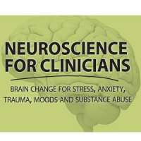 Neuroscience for Clinicians: Brain Change for Stress, Anxiety, Trauma, Mood