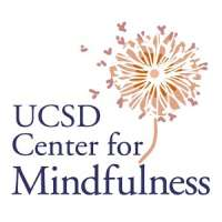 MBSR TTI: Mindfulness-Based Stress Reduction Teacher Training Intensive 2019