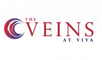 The VEINS 2020