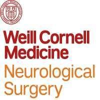 Minimally Invasive Cranial Neurosurgery: Recent Technical Advances With Han