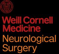 Global Neurosurgery 2019: A Practical Symposium, New York
