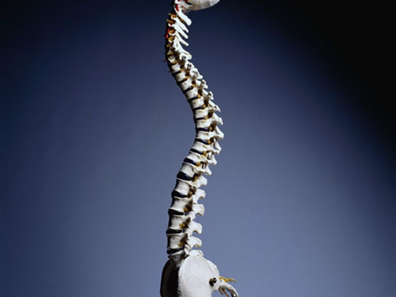 Menopausal Hormone Therapy Tied to Less Pronounced Kyphosis