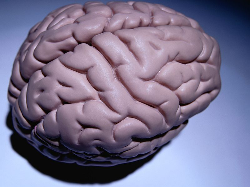 Diverse Neurological Effects Linked to Anti-PD-1 Therapy